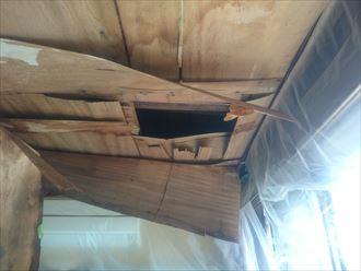 雨漏りにより一部が落下した天井