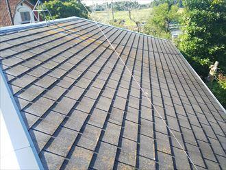 柏市南逆井で行ったスレート屋根の調査で防水性が低下し苔・藻・カビが発生