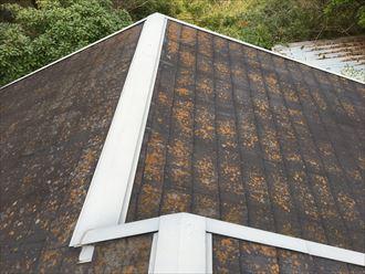 白子町 別荘の屋根被害004_R