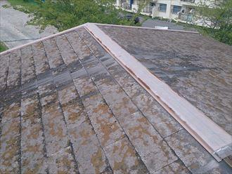 木更津市 屋根の板金交換工事003_R