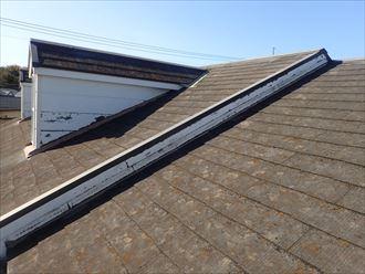 千葉市美浜区真砂で行った化粧スレート屋根調査で防水性の低下により苔や藻、カビが屋根全体に発生しています