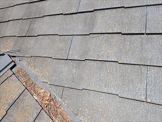 松戸市平賀で行った化粧スレート屋根の調査で屋根塗装の防水性の低下により屋根全体にひび割れが発生