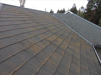 袖ヶ浦市でコロニアル屋根の屋根塗装をご検討で調査開始
