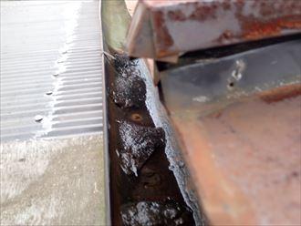 千葉市 倉庫屋根の雨漏り調査001_R