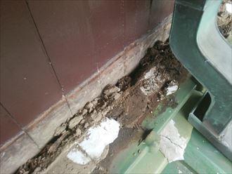 木更津市 雨漏り箇所上部瓦内部