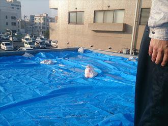 DSC_4270木更津市 防水工事