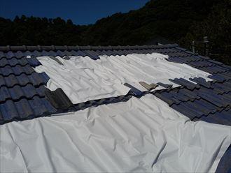 勝浦市 台風被害006_R
