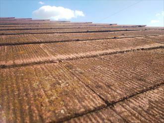 野田市岩名で行った化粧スレート屋根の調査で化粧スレートに反りが発生