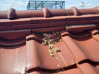 葺き土の露出は雨漏りに繋がります