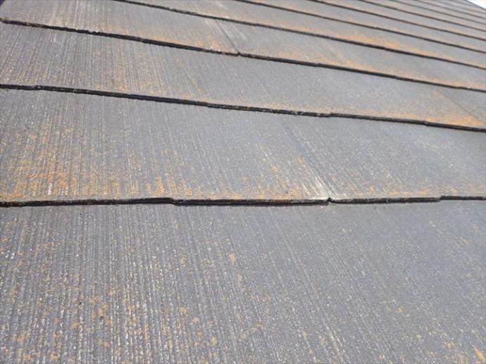 松戸市松飛台で行った化粧スレート屋根調査で塗装の剥がれが進行し素地が露出している化粧スレートは屋根塗装が必要です