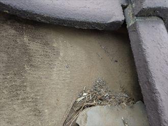 市原市 雨漏り調査001_R