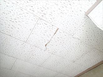天井の補修 富津市 修理前001_R.JPG