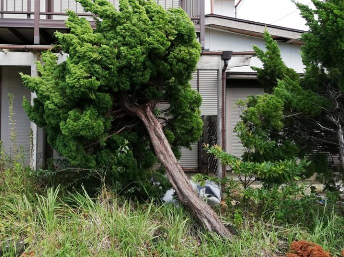 令和元年台風15号・19号で被災され、屋根工事をお待ちいただいている方へ