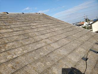 スレート屋根の防水性の低下により苔・藻・カビが発生