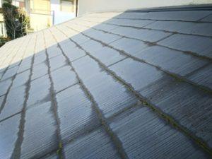 屋根塗装の劣化詳細
