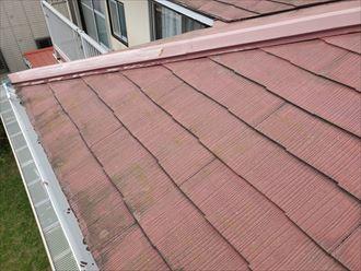 鎌ケ谷市丸山で行ったスレート屋根調査で軒先に苔・藻・カビが発生