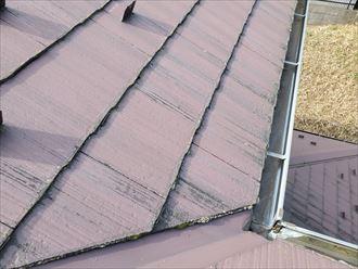 スレート屋根の塗装の劣化により防水性が低下しているため苔・藻・カビが発生