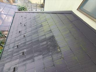 陽当たり悪い北側や下屋根に苔・藻・カビが発生