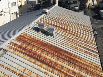 海側の瓦棒屋根