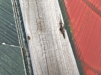 貫板の腐食、飛散の原因