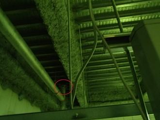 天井裏の雨漏り調査実施