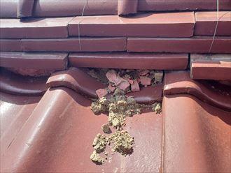葺き土が露出して崩れると棟自体が崩れてしまいます