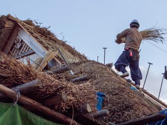 屋根が高いことも特徴