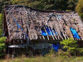 崩壊した川葺き屋根