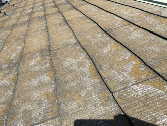 スレート屋根の調査、苔やカビ