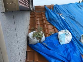 雨漏り箇所の調査、瓦屋根