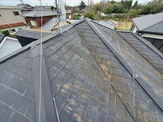 屋根塗装が剥がれ苔・藻・カビが発生