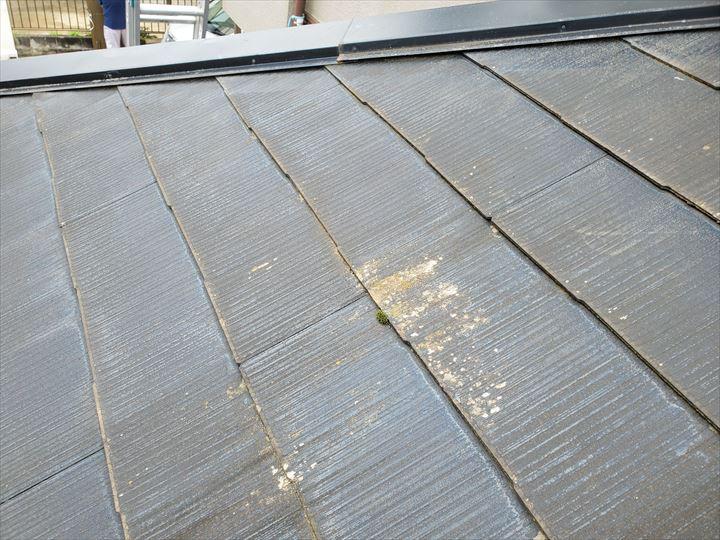 苔がスレートの隙間を塞ぐと雨漏りの原因になります
