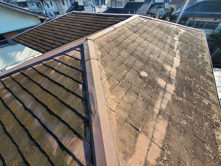 屋根塗装の塗膜の剥がれにより屋根が色褪せています