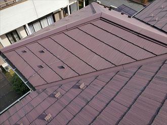 スレート屋根の防水性が低下し苔・藻・カビが発生