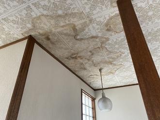 天井の雨染み確認