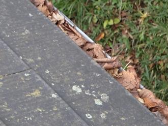落ち葉の詰まり、落ち葉除けネット