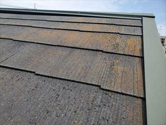 鎌ケ谷市南初富にて行ったスレート屋根調査で苔・藻・カビが発生しているのを発見