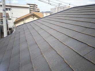 防水性が低下し苔・藻・カビが発生したスレート屋根