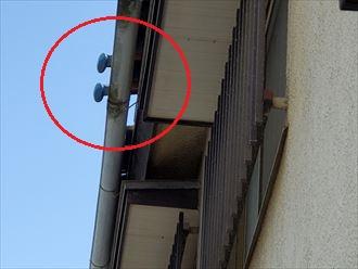 令和元年房総半島台風の影響で軒瓦が剥がれて軒樋に引っ掛かっています