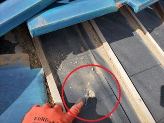 令和元年房総半島台風の影響で桟瓦が捲れてしまい防水紙を破いてしまいました