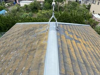 スレート屋根の苔カビ調査