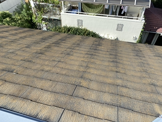 スレート屋根の調査、苔カビ