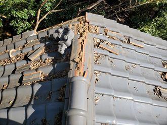 棟がクスれてしまい葺き土が露出