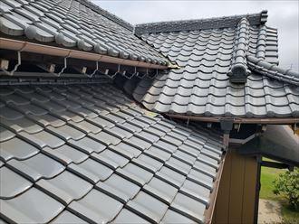 鎌ケ谷市中沢にて瓦屋根の土居のし調査