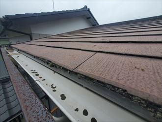 スレート屋根の防水性が低下し軒先に苔が発生しています