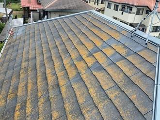 スレート屋根の苔カビ