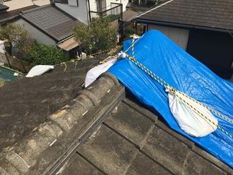 台風被害、ブルーシート