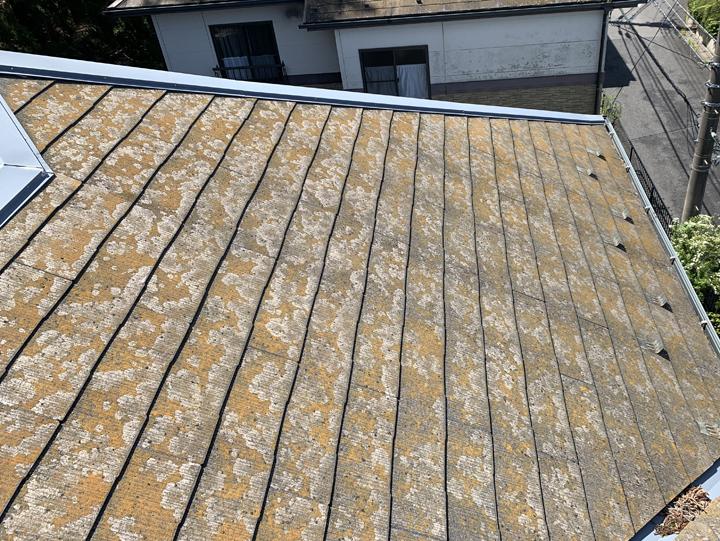 屋根全体の状況