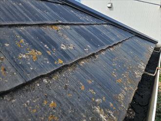 習志野市藤崎にて塗膜が剥がれたスレート屋根調査