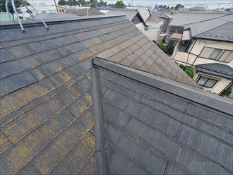 千葉市若葉区にて苔が発生しているスレート屋根の調査の様子